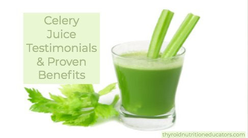 "Glass of fresh celery juice with two celery stalks and celery leaves on a white background with the words ""Celery Juice Testimonials & Proven Benefits""