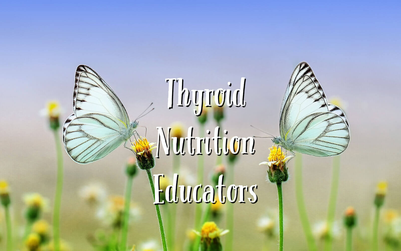 Thyroid Nutrition Educators Logo| Heidi Moretti, RD, LN & Jeanette Kimszal RDN, NLC