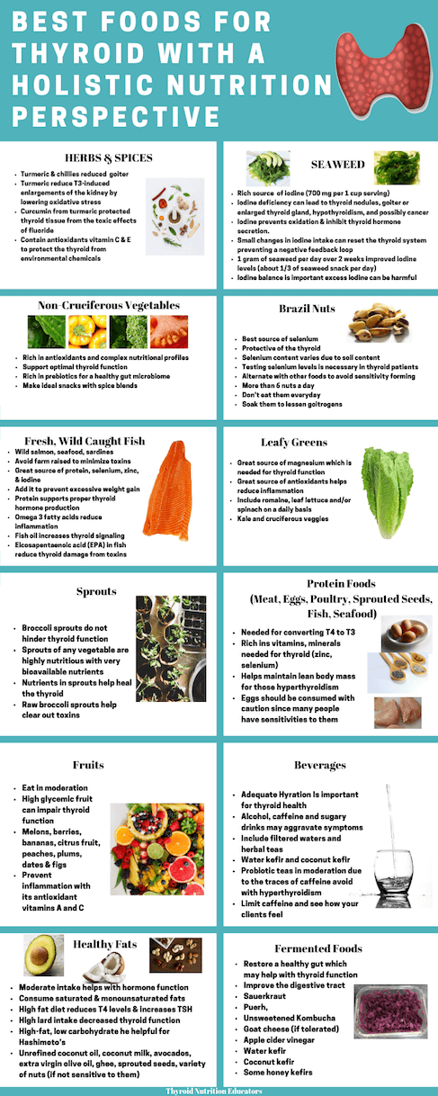 Infographic of Best Foods for Thyroid Patients with a Holistic Perspective | Thyroid Nutrition Educators