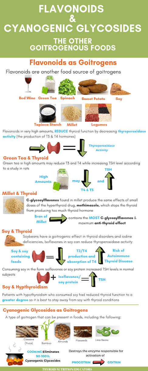 Infographic of Flavonoids and Cyanogenic Glycosides as Goitrogens | Thyroid Nutrition Educators