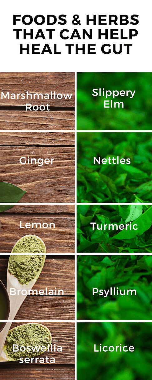 Foods & Herbs that can help thyroid health | Thyroid Nutrition Educators