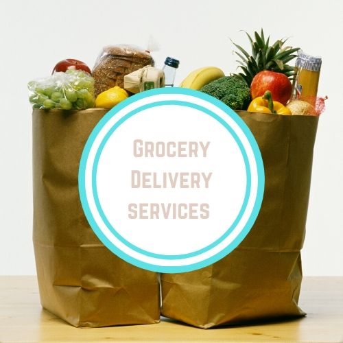 "Thyroid resources with theWords ""Grocery Delivery Services"" in a white circle on top of two paper bags with food coming out of them 