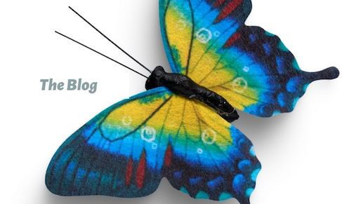 "Multicolored butterfly with the words ""the blog"" Educations Programs 