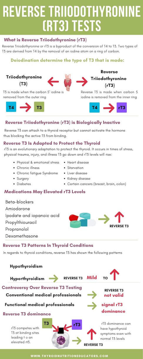 Reverse Triiodothyronine (rT3) Tests Infographic | Optimal Thyroid Levels | Thyroid Nutrition Educators