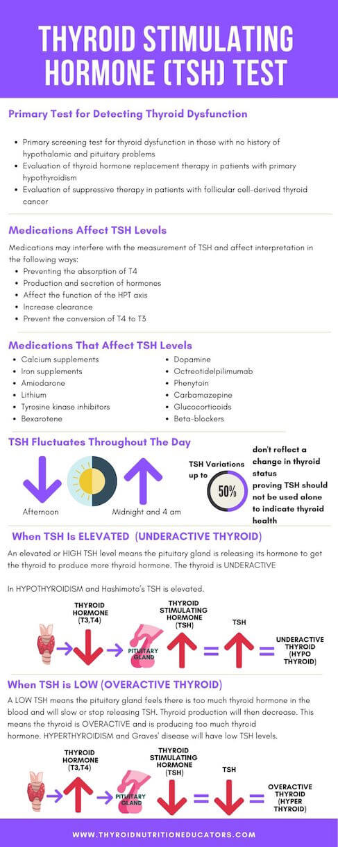 Thyroid Stimulating Hormone Tests Infographic | Thyroid Nutrition Educators